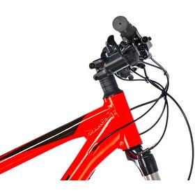 """FOCUS Whistler 3.8 MTB Hardtail 29"""" czerwony"""